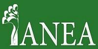 ANEA - Associação Nacional de Espondilite Anquilosante